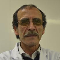 Carlos Elgueta